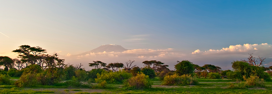 Amboseli National Park | Amboseli | Kenya luxury safari