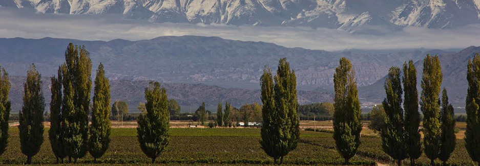 Cavas Wine Lodge | Mendoza | Luxury Argentina Travel | Ker Downey