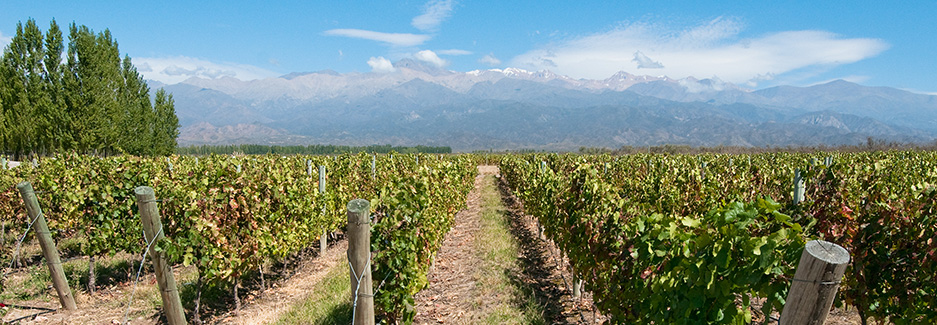 Mendoza | Luxury Argentina Travel | Ker Downey