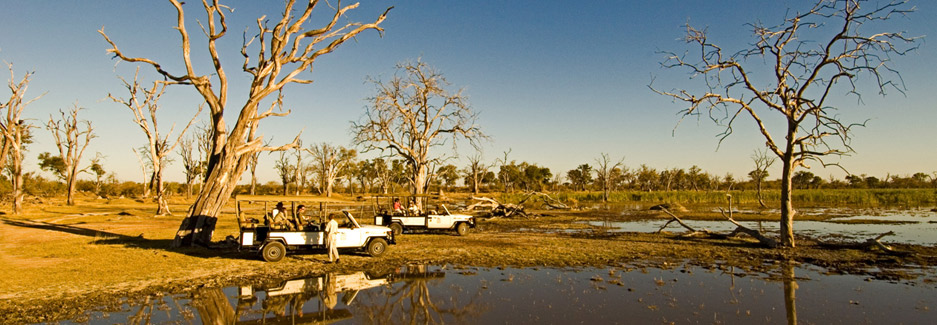 Camp Moremi | Luxury Botswana Safari | Africa | Ker & Downey