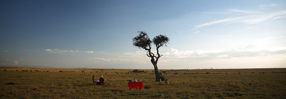 Elephant Pepper Camp | Mara North | Luxury Kenya Safari
