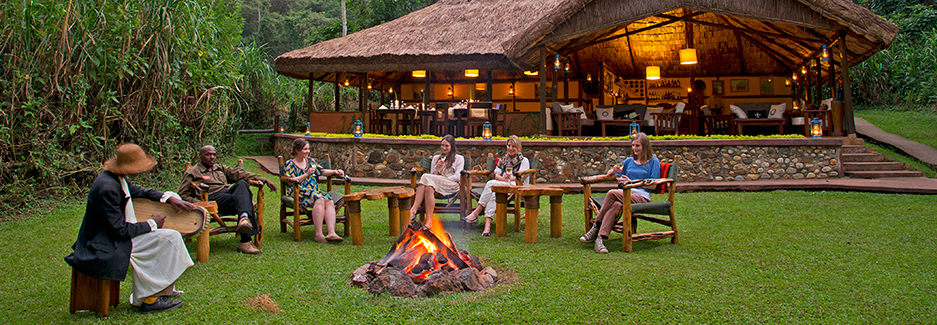 Gorilla Forest Camp | Bwindi | Uganda Safari