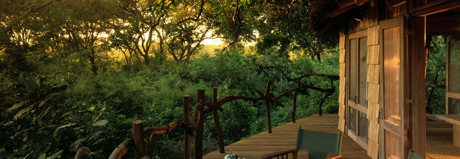 Lake Manyara Tree Lodge | Tanzania Luxury Safari