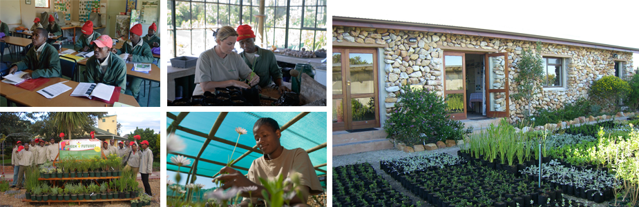Grootbos Foundation - Green Futures