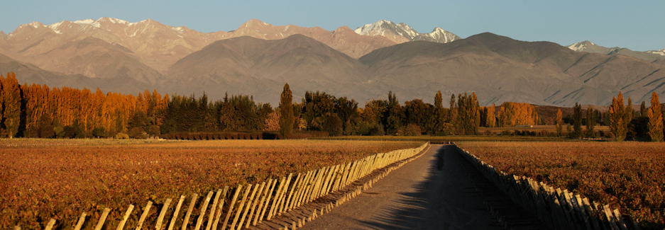 Entre Cielos Lodge | Mendoza | Luxury Argentina Travel | Ker Downey