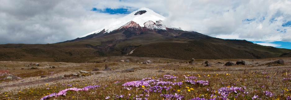 Cotopaxi National Park - Ecuador Travel - Ker & Downey