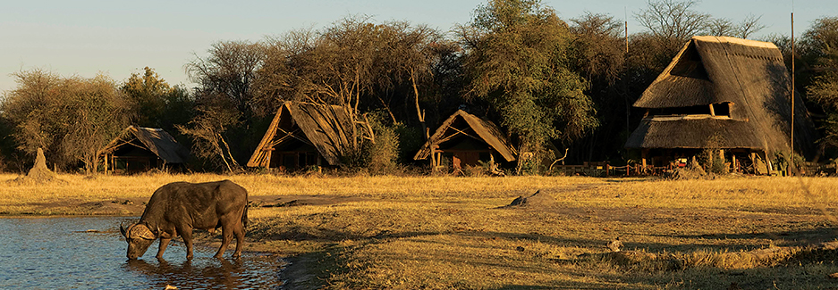 The Hide | Hwange National Park | Zimbabwe Luxury