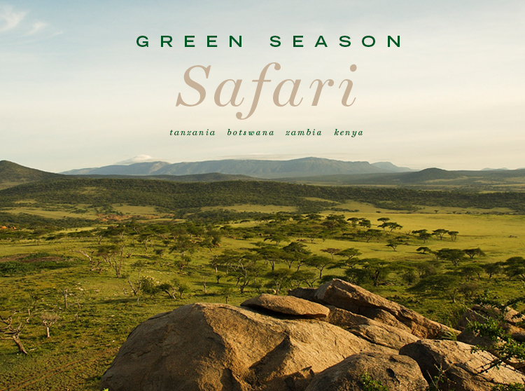Green Season Safari