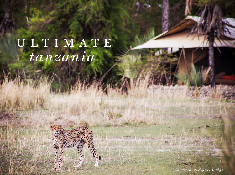 Ultimate Tanzania: A New Journey from Ker & Downey