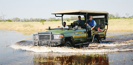 A Luxury Botswana Safari