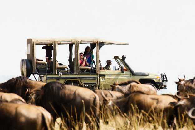 namiri plains wildebeest migration