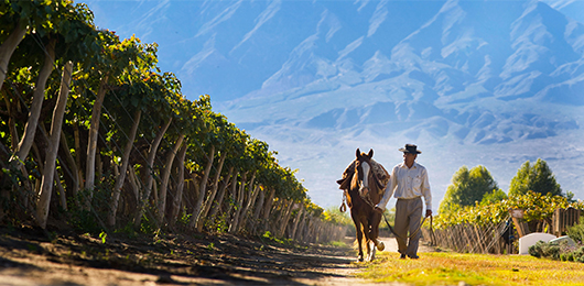 Fine Wines and Frontiers