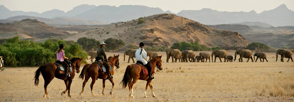 Damara Elephant Ride | Luxury Namibia | Ker Downey