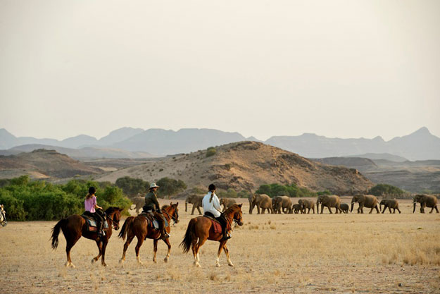 African Horse Safaris: Our Top 5