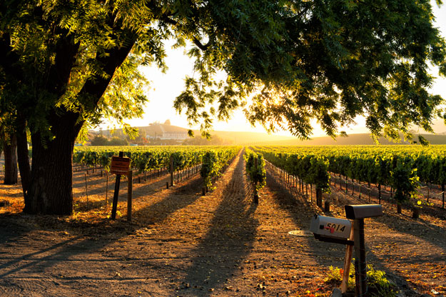 Northern California Luxury Travel and its Natural Wonders