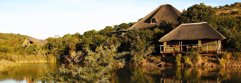 Shamwari Bayethe Lodge | South Africa Luxury Safari