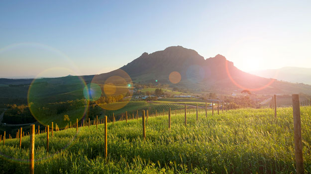 South Africa Winelands | Luxury South Africa | Ker Downey | Delaire Graff Estate