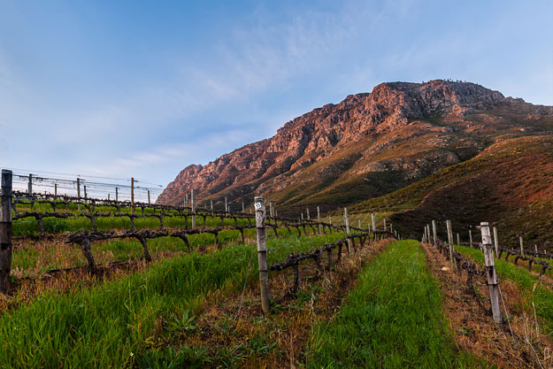 South Africa Winelands | Luxury South Africa | Ker Downey | Thelema Mountain Vineyards