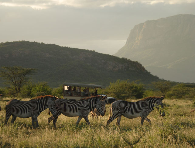 Luxury Kenya Family Safari | Ker Downey