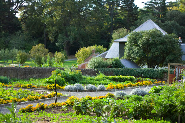 Best Places to Travel in November   Luxury New Zealand Travel   Ker Downey