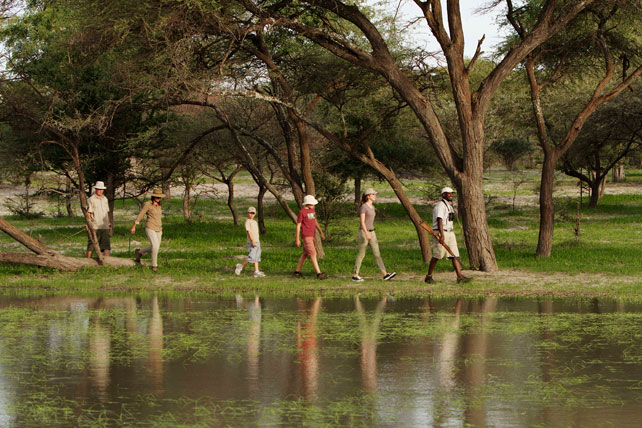 Multi-Generational Family Safaris | Ker Downey