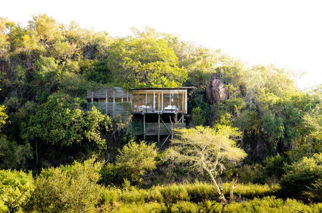 Safari and Beach Vacations for the Best of the Bush and Sand