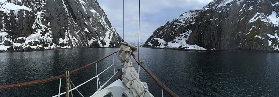 MS Yljali - Lofoten Islands Private Yacht - Arctic Safari Norway - Ker Downey