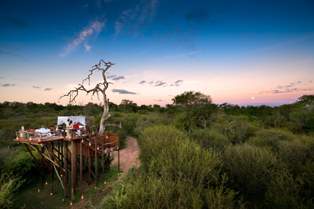 Luxury Tree Houses - Lion Sands - South Africa Safari - Ker Downey