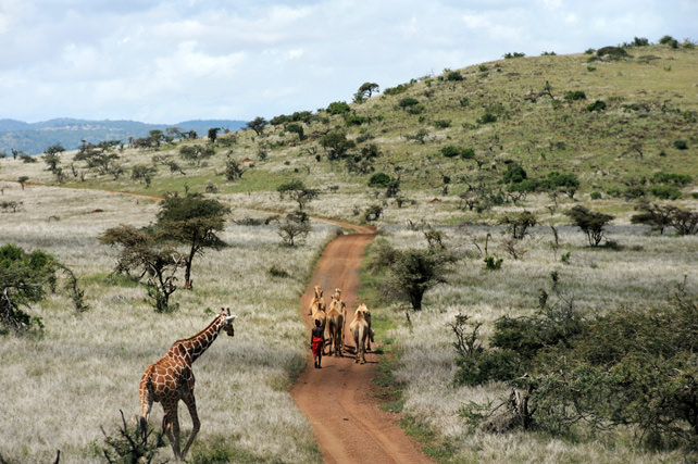 Best Places to travel in 2017 - Luxury Travel - Kenya - Ker Downey