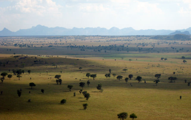 Kidepo Valley National Park, Uganda's Undiscovered Wilderness