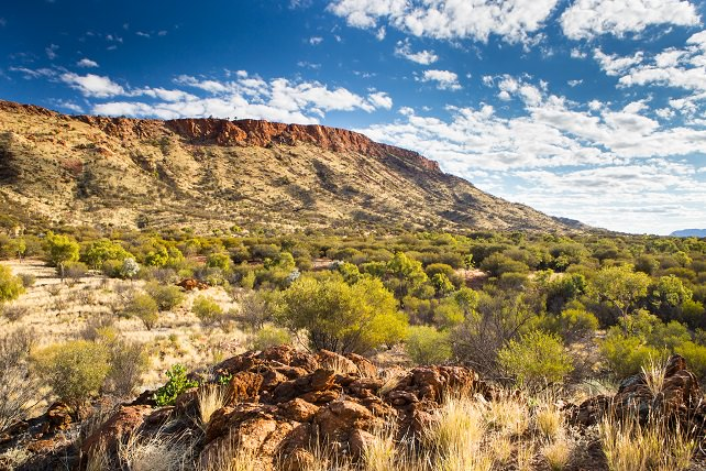 Luxury Australia Travel - Alice Springs - Ker Downeya