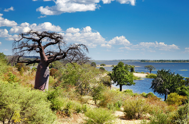 Luxury Travel to Botswana - Ker Downey