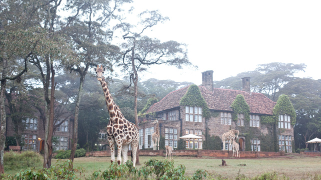 The Safari Collection - Luxury Kenya Safari - Giraffe Manor - Ker Downey