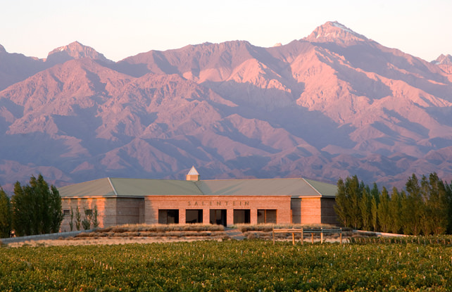 Top 6 Things to Do in Mendoza