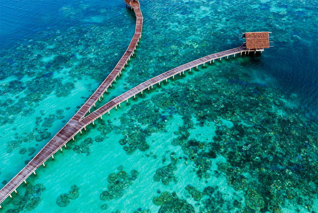 Coral Triangle Luxury Triangle - Ker Downey