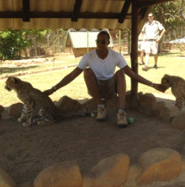 Wazha and his new cheetah pals